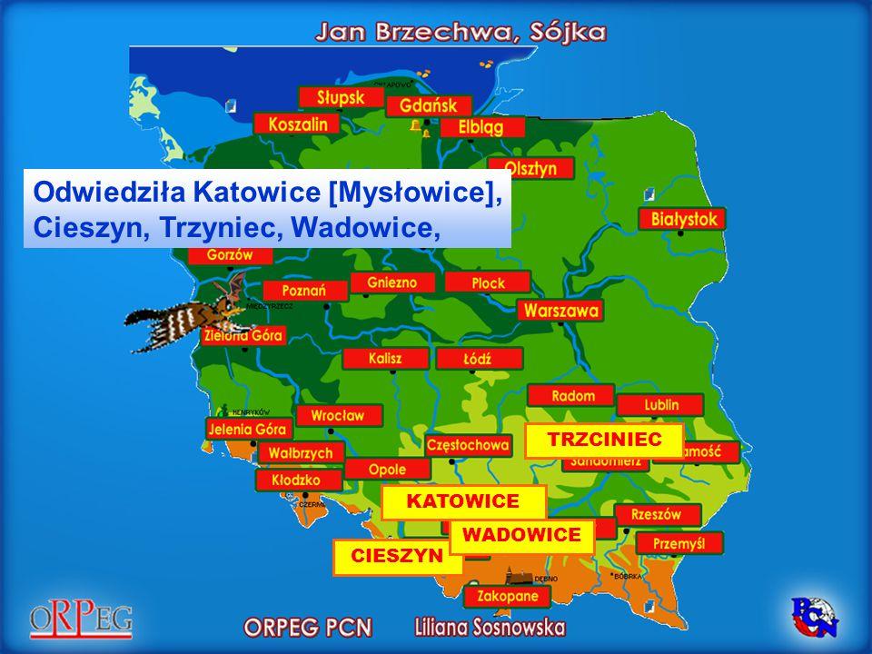 Odwiedziła Katowice [Mysłowice], Cieszyn, Trzyniec, Wadowice,